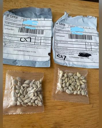 semillas por correo