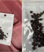 Qué hacer si recibes un paquete de semillas no solicitado de China