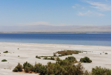 Nuevos Fondos para Restaurar el Salton Sea