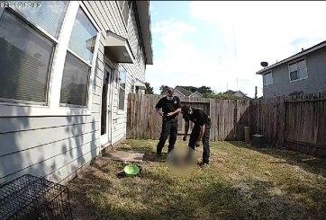 Policía encuentra a perro encadenado que murió por calor extremo