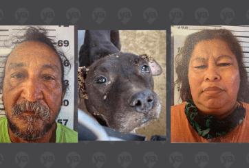 Dos arrestados en investigación de crueldad animal de Mercedes