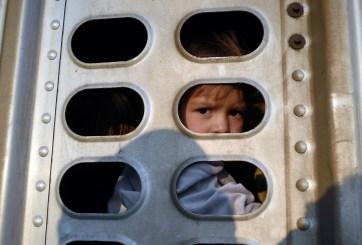 660 niños migrantes fueron alojados en hoteles para ser deportados