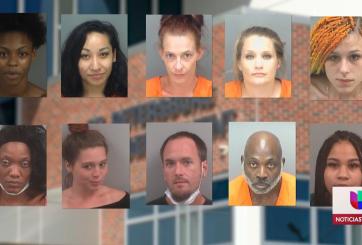 Tras las rejas 22 personas por tráfico humano en Tampa