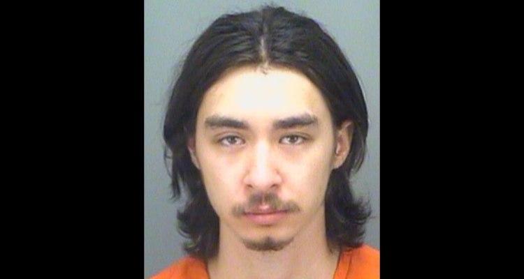 Mató a su hermano gemelo mientras 'jugaban' apuntándose con armas