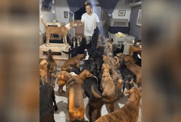 VIDEO: Hombre rescató cientos de animales callejeros de huracán Delta