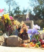 Madre pide a autoridades restaurar parque tras asesinato de su hija