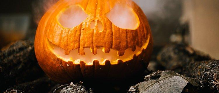 Ignoraron la pandemia y el riesgo del COVID para disfrutar de Halloween