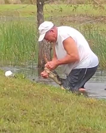 VIDEO: Hombre de Florida lucha con caimán para rescatar a su cachorro