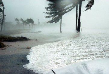 Autoridades de Tampa se preparan ante embates de Eta en la bahía