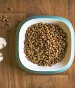 Retiran comida para mascotas tras las muertes de 28 perros por toxina
