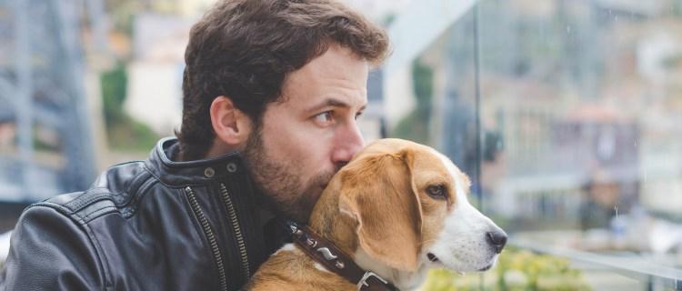 Hombre recibe el año reuniéndose con su perrita perdida por 10 meses