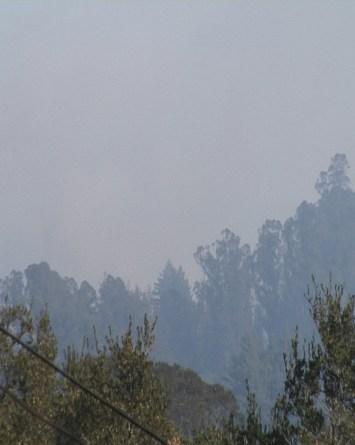 Incendios en el condado de Santa Cruz