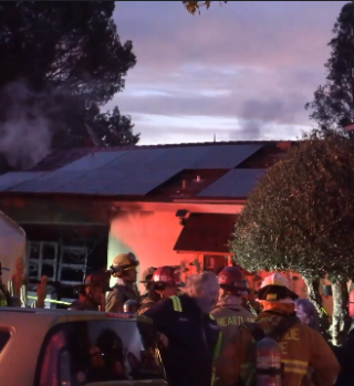 Mueren calcinadas decenas de mascotas tras incendio en casa de El Cajon