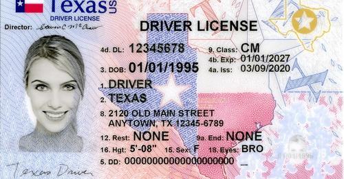 LEY REAL ID